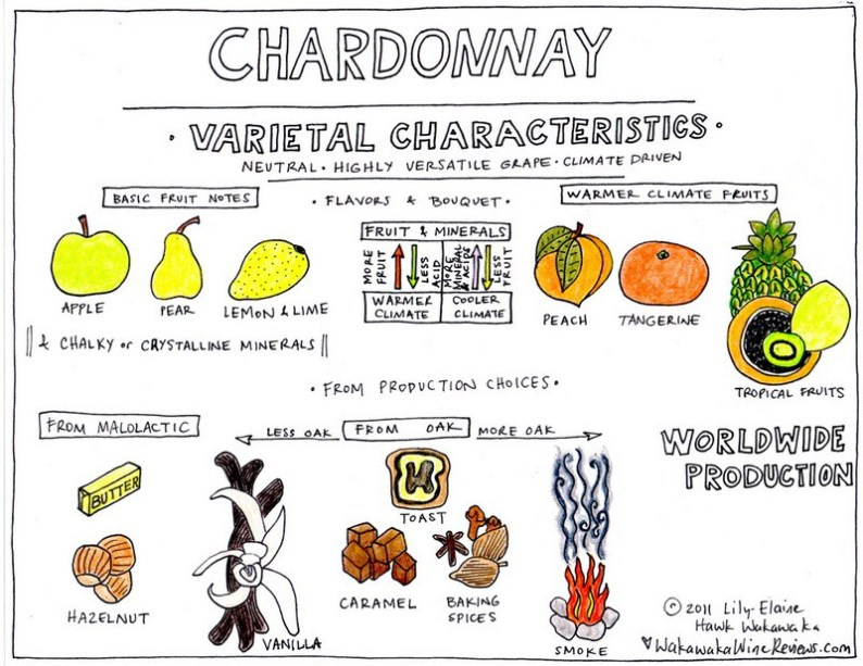 CHARDONNAY E CLIMA
