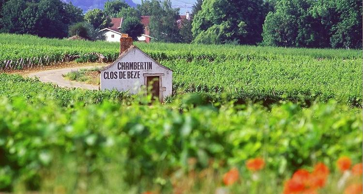 franca-borgonha-chambertin